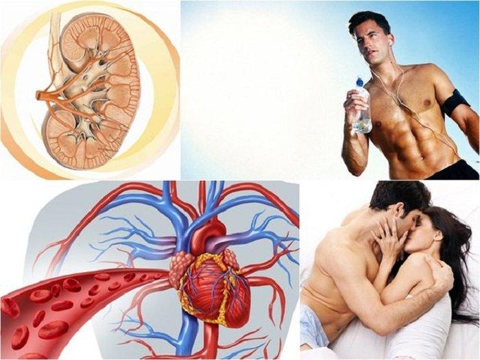 Đông trùng hạ thảo vô cùng có lợi cho nam giới