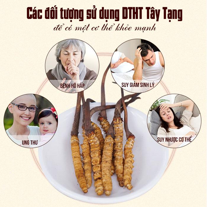 cac-doi-tuong-su-dung-dtht