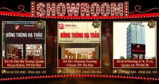 : Địa chỉ showroom bán đông trùng hạ thảo tại Hà Nội và Tp Hồ Chí Minh