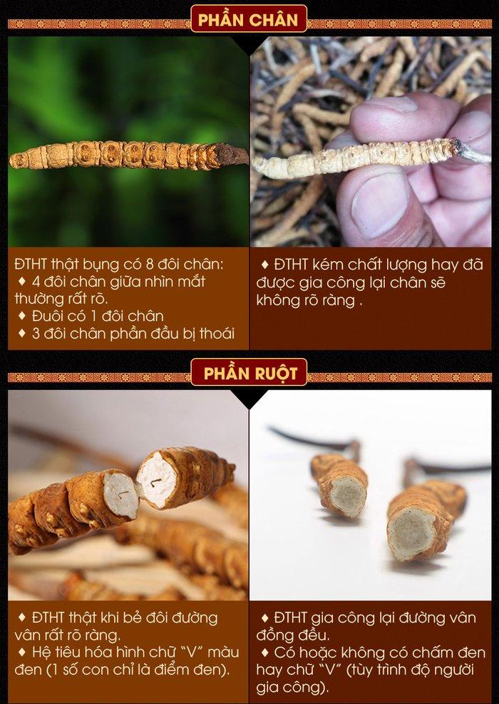 phân biệt dtht tự nhiên tây tạng và đtht kém chất lượng 4