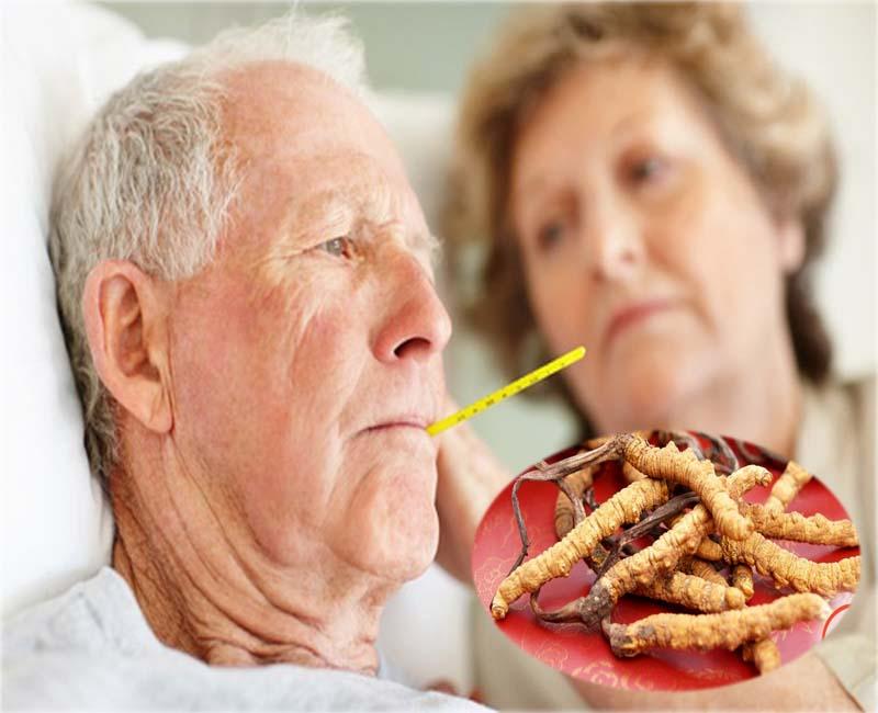 Đông trùng hạ thảo Tây Tạng hỗ trợ tốt cho bệnh nhân tiểu đường